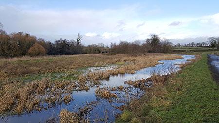 Management of natural habitats
